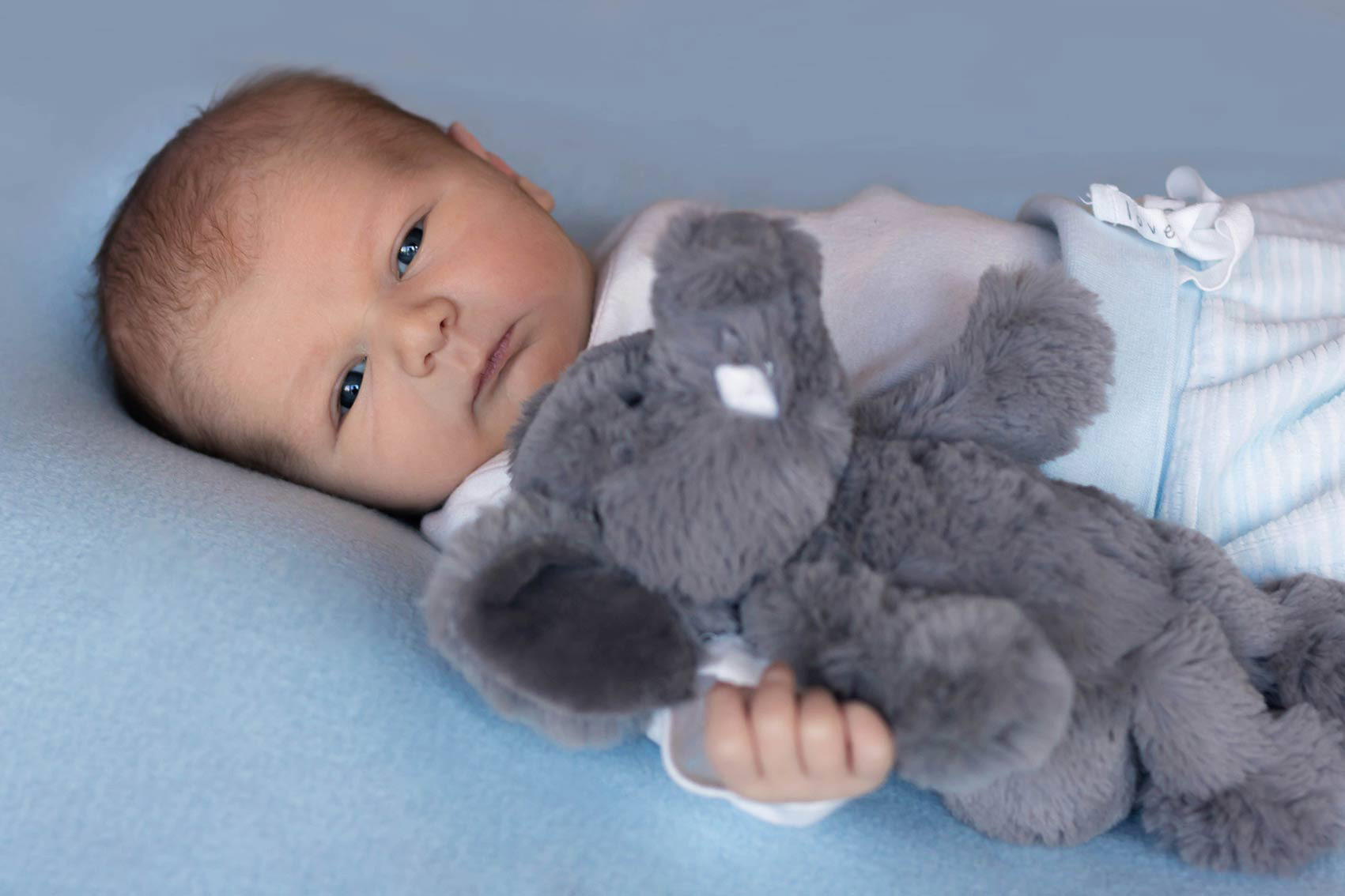 Newborn-Photography-BabyBoy-200kb-9
